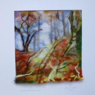 Sunlit Cotswold Wood 002 (1)