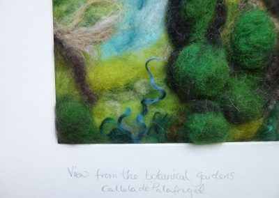 Sunlit Cotswold Wood 013